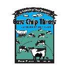 1998 - Wisconsin Sesquishy Chip Tennial